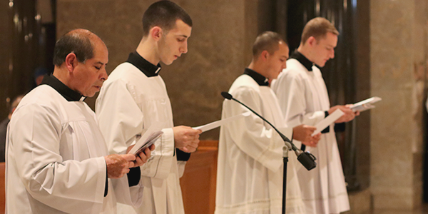 Institute of the Incarnate Word (IVE) - Four IVE seminarians professed evangelical vows, 18 others renewed vows and 12 novices received their religious habit.